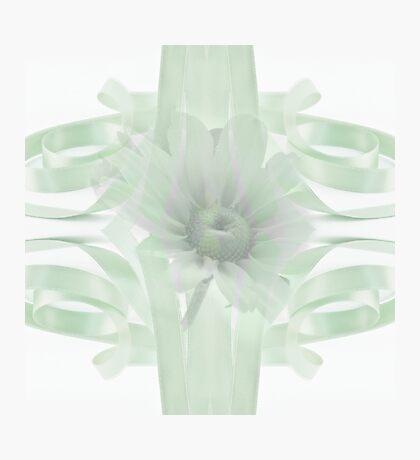 Green Gloriosa Daisy In Ribbon Photographic Print