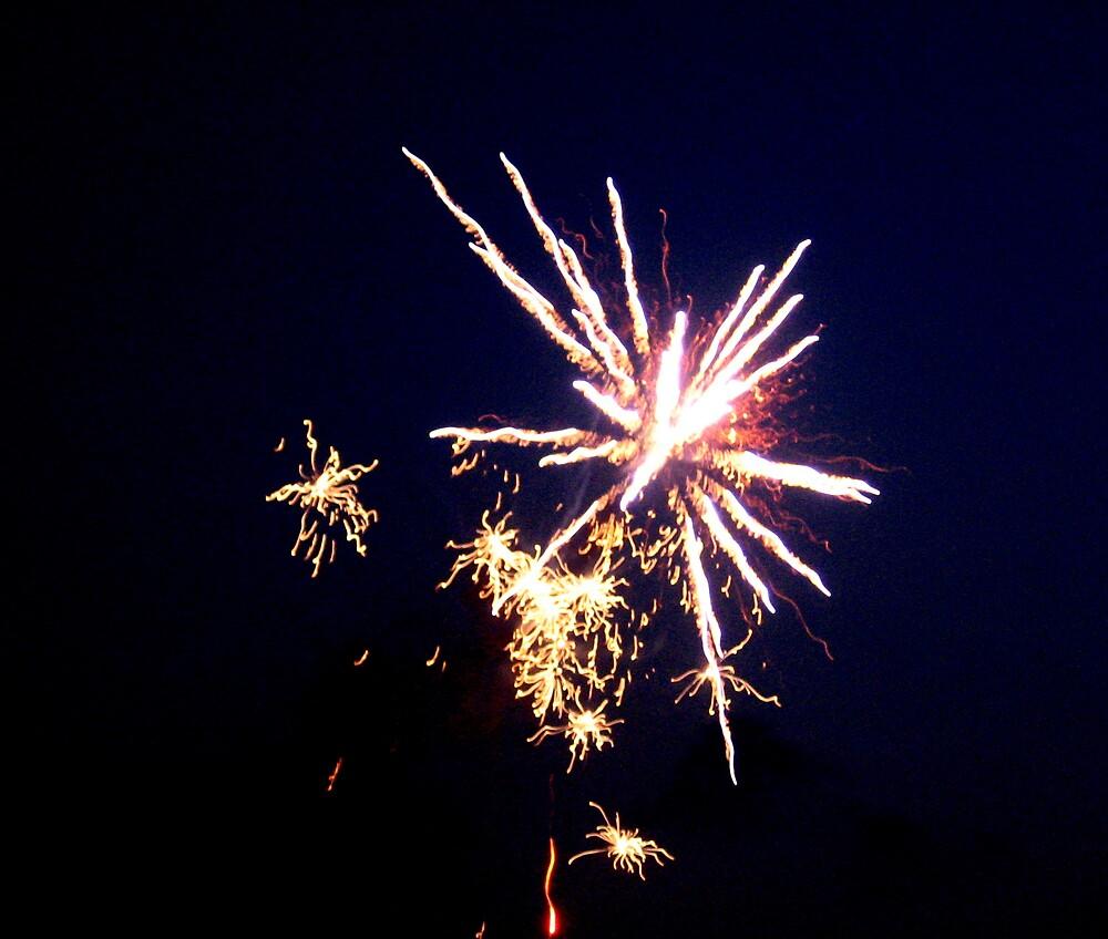 Fireworks 6 by junebug076