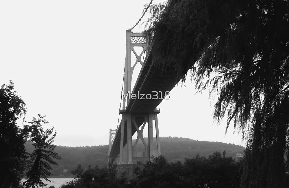Mid Hudson Bridge, Poughkeepsie, NY by Melzo318