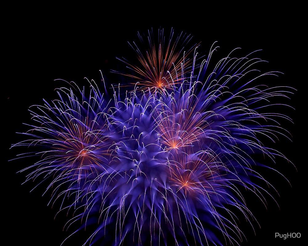 Fireworks C11 by PugH00