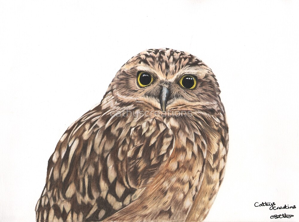 A little Burrowing Owl by cathyscreations