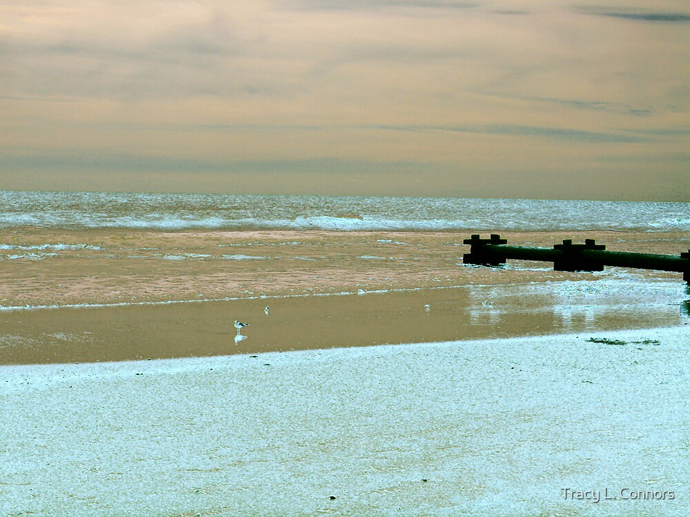 low tide by Tracy L. Connors