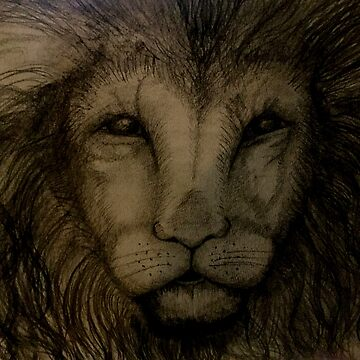 Lion by Jules11