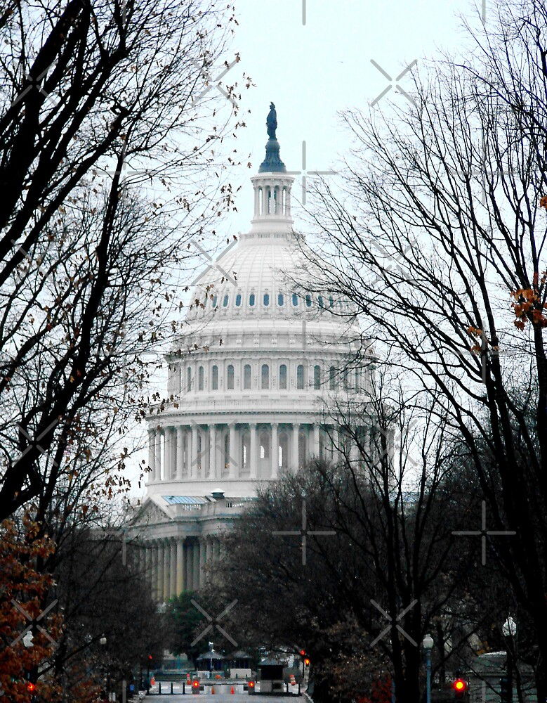 The Capitol Building - Washington D.C. by Kimberly Miller
