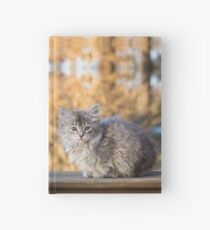 Little Miss Floof  Hardcover Journal