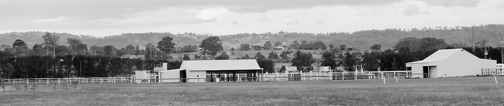 Camden Equestrian Center by David  Hall