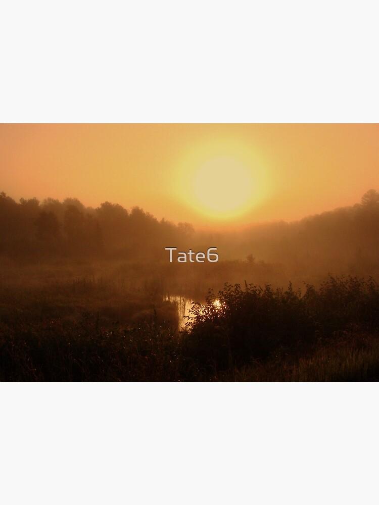 Something Good by Tate6