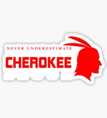 Never Underestimate The Power of A Woman Who Has The Cherokee Blood Sticker