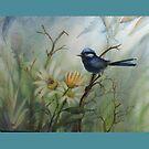 Splendid Blue Fairywren by Vickyh