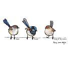 Fairy Wren Style by Ardis Cheng