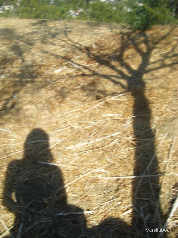 shadow in a haystack by vanillabean