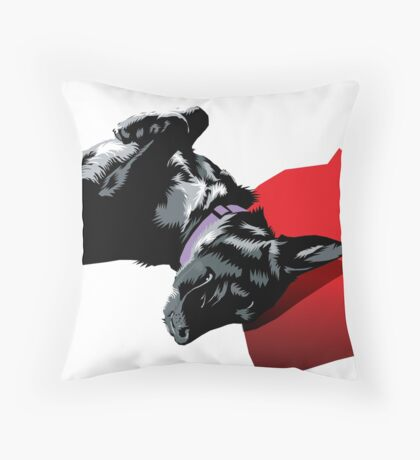 Asha Throw Pillow