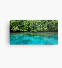 Bougainville Shoreline Metal Print
