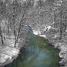 Snowy Creek by LizzieMorrison