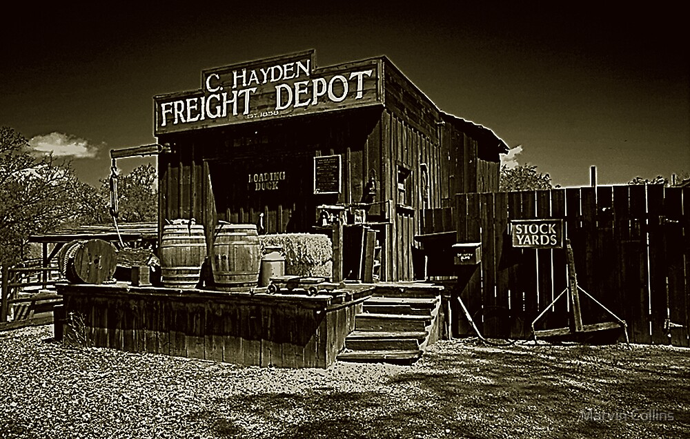 Freight Depot by Marvin Collins