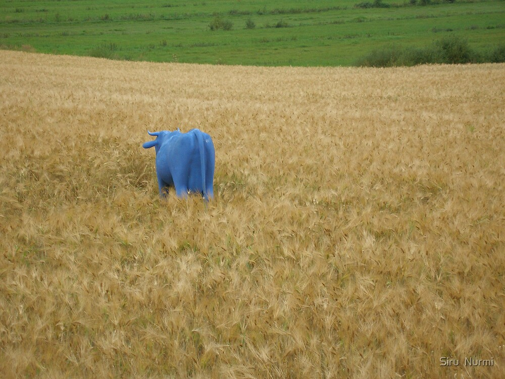 The blue cow on a field by Hannapei