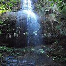 Adelina Falls Lawson by Jodie Elchah