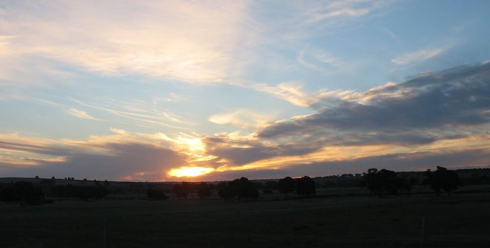 Sunset at Dandaragon by Bubb
