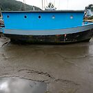 The Blue Boat by SWEEPER