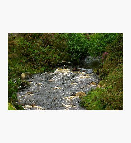 Loskey Beck - Spaunton Moor Photographic Print