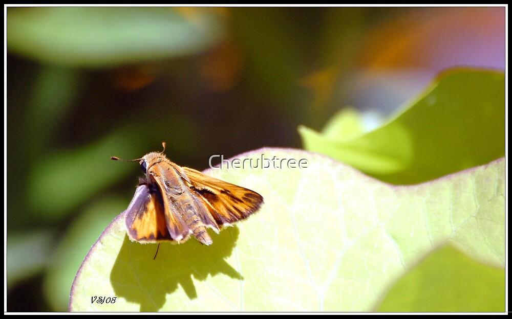 Marvelous Moth by Cherubtree