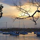 Valentine Moody Sunset by Bev Woodman
