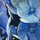 Blue Hydrangea - Gouache Painting by Samantha J Horne by samanthajhorne