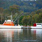 Boating Duel! by Bev Woodman