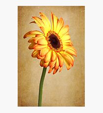 Painted Flames Photographic Print