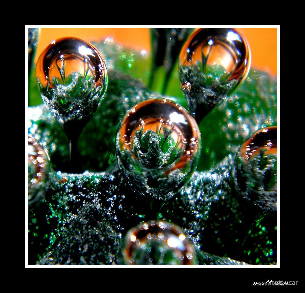 bubble  by matt ucar