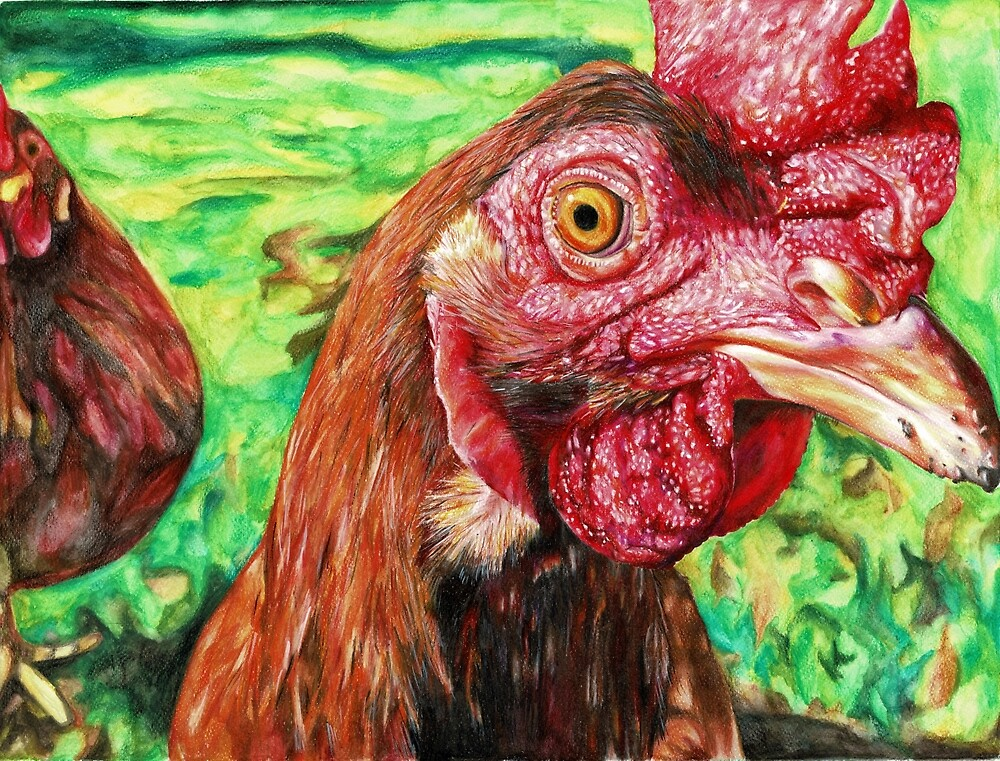 Curious Chicken by Skye  Riseley
