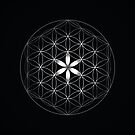 The Flower of Life | Silver by Daniel Watts