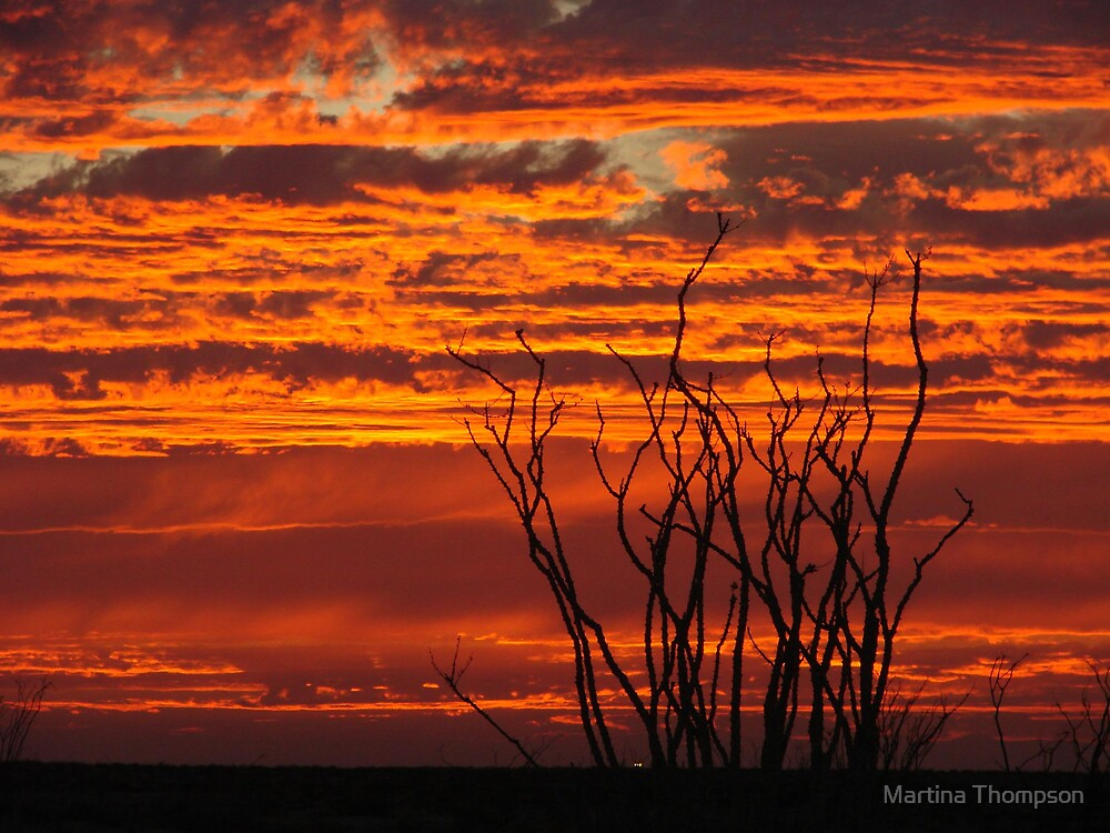 Sky on Fire by Martina Thompson