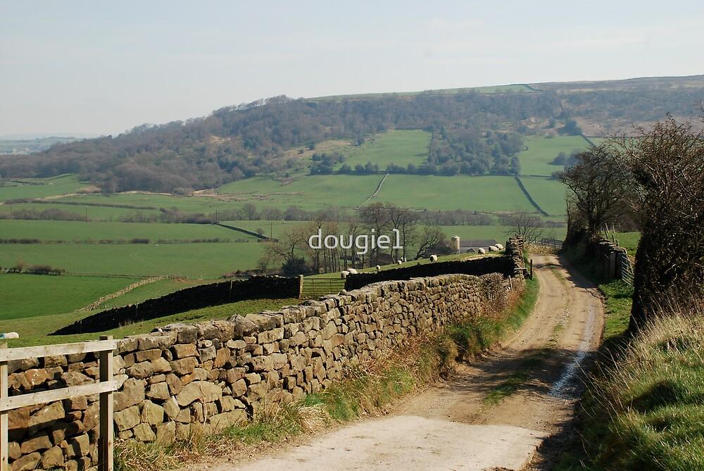 A View near Danby Castle by dougie1