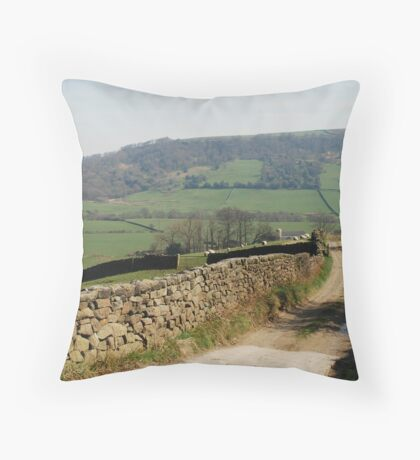 A View near Danby Castle Throw Pillow