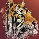 TIGER, TIGER by Linda Ridpath