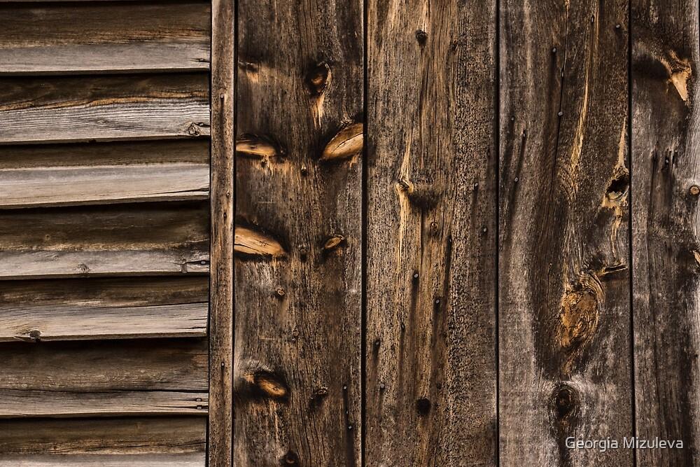 Weathered Wooden Abstracts - Three by Georgia Mizuleva