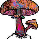 Papa Shroom 69' by Daniel Watts