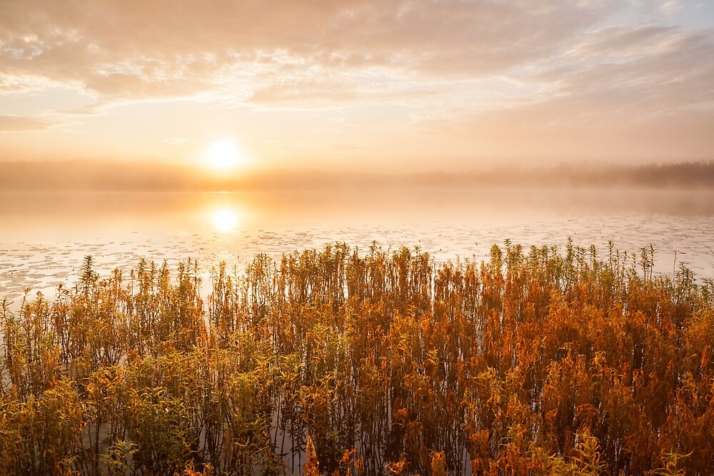 Sunrise at foggy lake by Juhani Viitanen