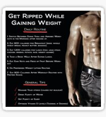 Get Ripped While Gaining Weight - Infographic Sticker