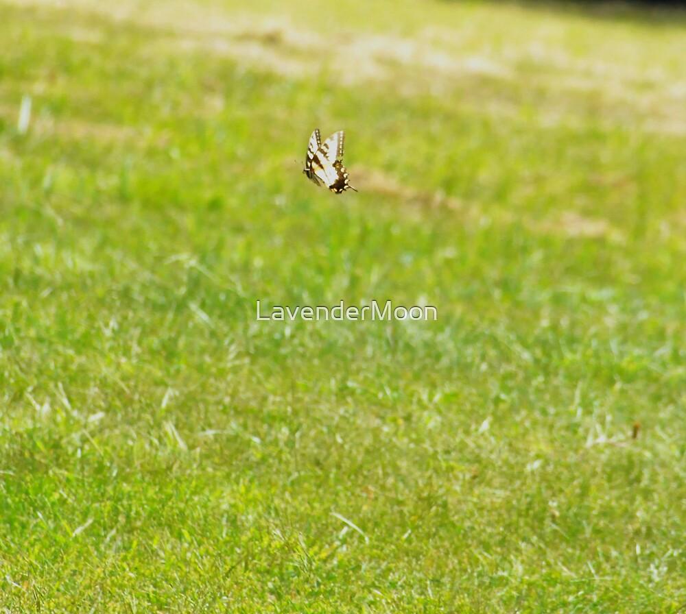 In Flight~2 by LavenderMoon