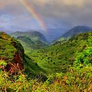 Hanapepe Valley by DJ Florek