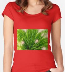 Bright spring grass field with sunlight bokeh background; selective focus Women's Fitted Scoop T-Shirt