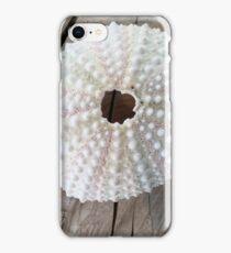 Sea egg on wood iPhone Case/Skin