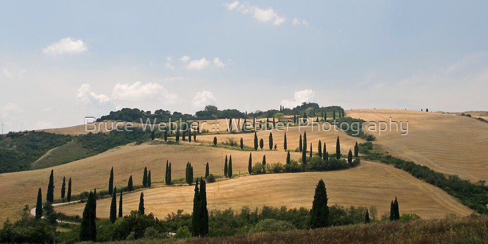 Tuscan Curves by Bruce Webber :: Webber Photography