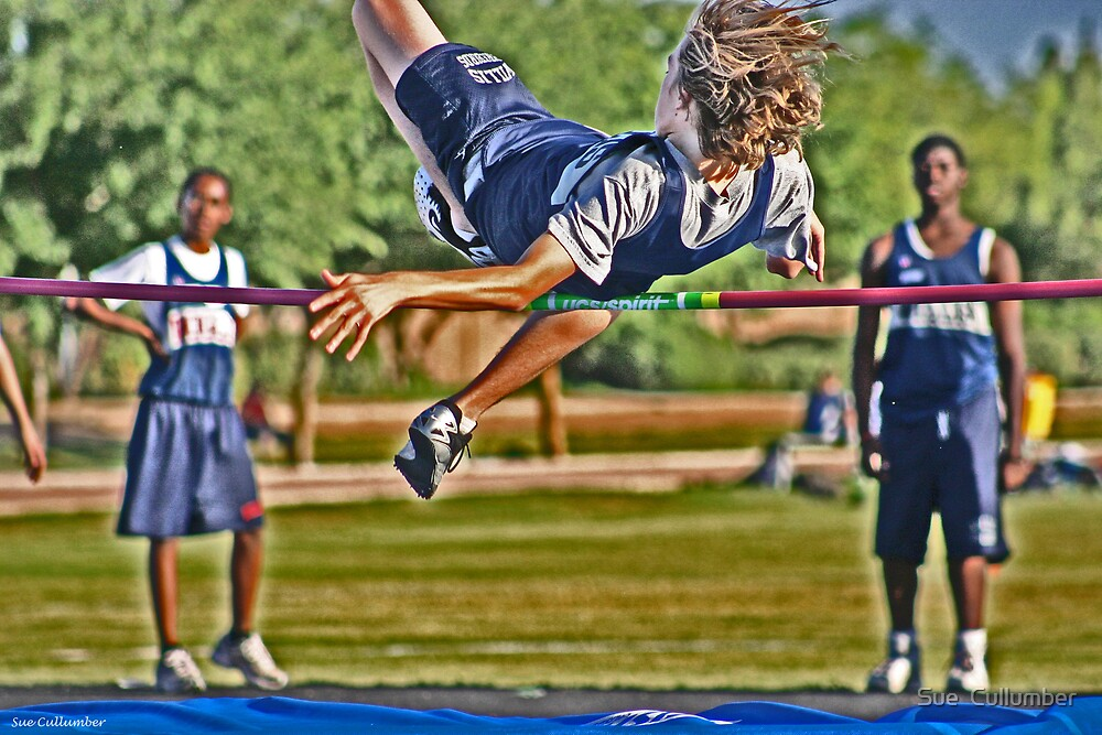 The High-jumper by Sue  Cullumber