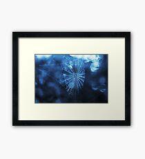 Spider Web in Blue Framed Print