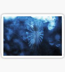 Spider Web in Blue Sticker