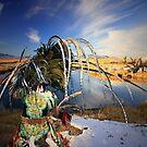 Native Dream by Gene Praag