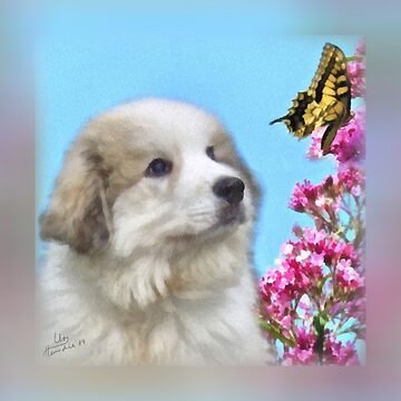 Great Pyrenees Puppy and Butterfly by GreatPyrFancy